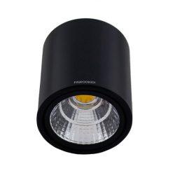 Đèn LED downlight gắn nổi tròn 12W FK-DOR08