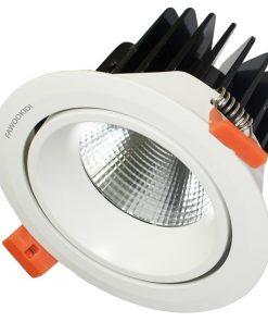 Đèn LED Spotlight đơn 12W FK-SP101-T